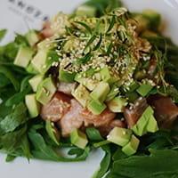 Zanonza Open Bar Тар-тар из лосося с авокадо